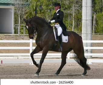 WEST PALM BEACH, FLORIDA - MARCH 6: Melissa Taylor and Chicco competing in the Wellington Classic Dressage Challenge II on March 6, 2009 in West Palm Beach.