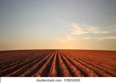 West Texas Farm Field