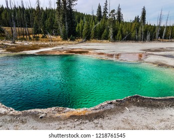 The West Thumb Geyser Basin in Yellowstone National Park in Wyoming, is quite an intriguing thermal area due to the striking azure color of the geysers.