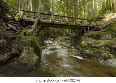 West Vancouver BC, Canada: Wooden pedestrian bridge over Cypress Creek at Cypress Falls Park, which is a short 30 minute drive from Downtown Vancouver.
