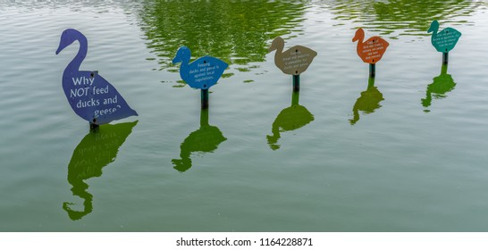 Westbury, NY - August 21, 2018: Signs in the water explain why not to feed the ducks and geese in Salisbury Lake  at Eisenhower Park.