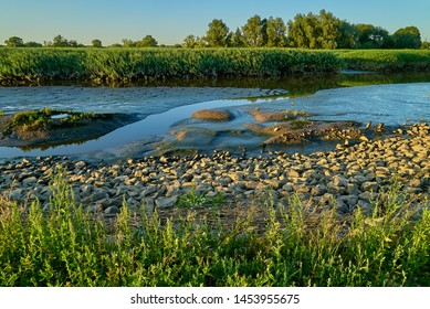 """The """"Westergate"""", a branch of the river Weser (district Wesermarsch, Germany) at low tide surrounded by lush green with reed and trees in the background"""