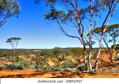 Western Australia Landscape