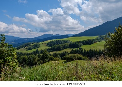 western carpathian Tatra mountain skyline with green fields and forests in foreground. summer in Slovakian hiking trails