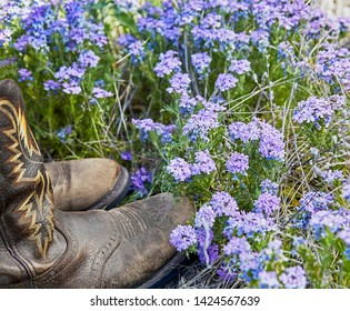 Western cowboy boots in a field of purple wild flowers