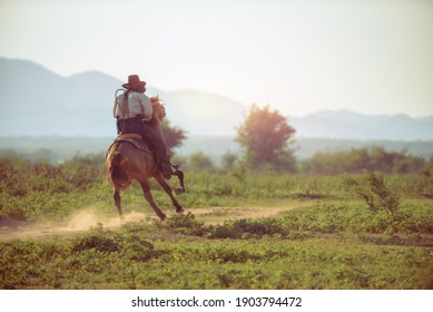 A western cowboy riding a horse in a hand holding a rope