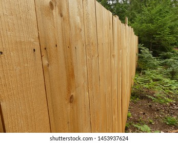 Western Red Cedar Fence in Forest