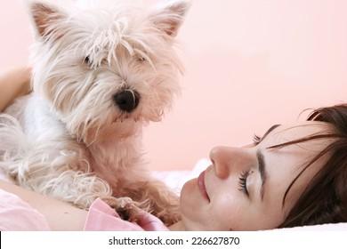 Westie sleeping next to woman in bed .