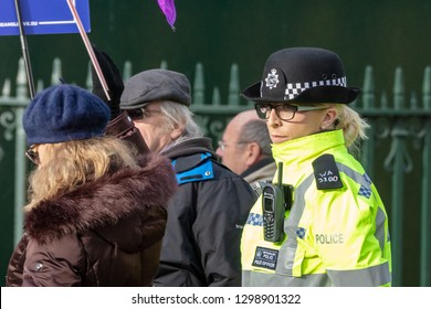 Westminster, London, UK; 29th January 2019; Close Up View of Female Metropolitan Police Officer Policing a Pro-Brexit Demonstration Outside Parliament