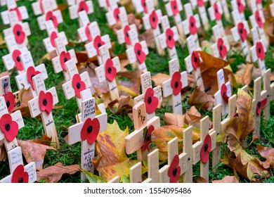 Westminster, London, UK. 8th November 2019. Field of Remembrance on Westminster Abbey grounds, leaf fallen in rows of memorial crosses with inscriptions and poppies.