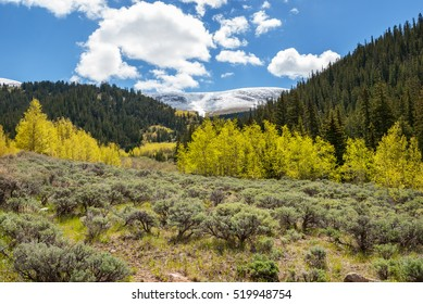 Weston Pass scenery in early summer in the Colorado Rockies.