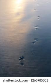 wet beach footprints