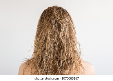 Wet, blonde, messy woman's hair after shower on the gray background. Care about beautiful, healthy and clean hair. Beauty salon concept. Young girl's back view.