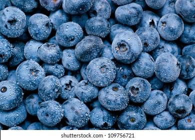Wet blueberries background