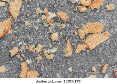 wet bread crumbs thrown on asphalt for pigeons, abstract background. pieces of white bread lie on the gray stone surface