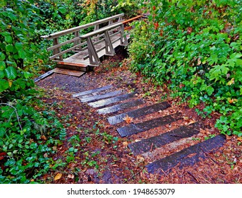 Wet Day on the Trail - A footbridge scene at Minto Park - east of Gates, OR