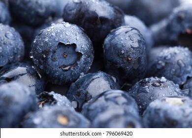 Wet fresh Blueberry background. Selective focus. Macro shot