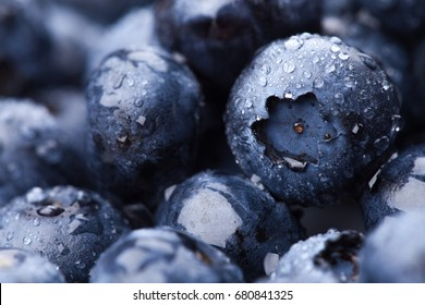 Wet fresh Blueberry background. Studio macro shot