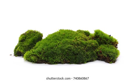 Wet green mossy hill isolated on white background