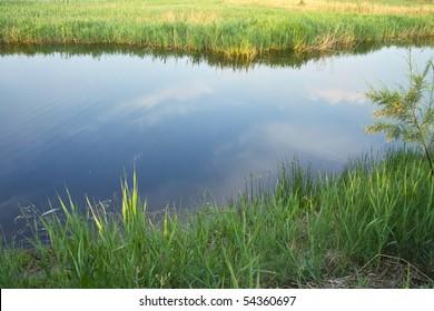 Wet marsh