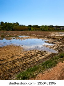 Wet mud puddle in field. Countryside: Les Basses d'en Coll, Platja de Pals - Costa Brava (Girona, Spain). Country road.
