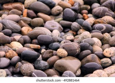 Wet pebble background on the seashore. Depth of field