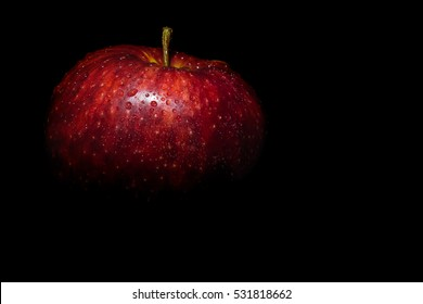 wet red apple in drops of water on a black background. darkened photo