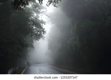 Wet road and foggy