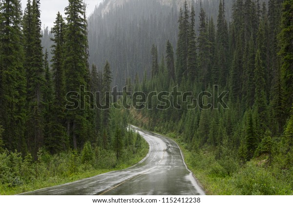 A wet road winds through the mountains and trees