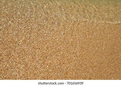 wet sea sand on the beach
