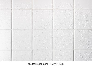 wet white tiles in the bathroom, white grout seams