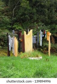 Wet Windblown Washday