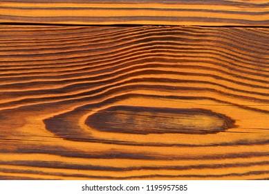Wet wood texture grain pattern yellow pine of Douglas fir.