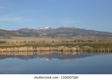 Wetland at Monte Vista National Wildlife Refuge, Monte Vista, Colorado