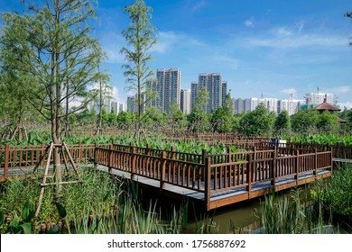 Wetland Park is one of Combination between Urban and Nature Taken in Xiamen at 11 AM
