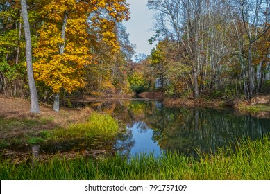 A wetland pond in Allaire State Park in Monmouth County New Jersey.
