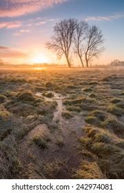 Wetland Sunrise, Ice and Fire