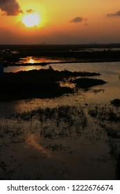 wetland with sunset sky background
