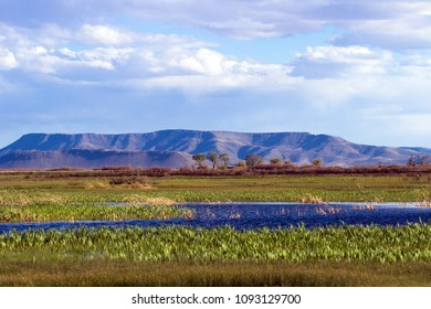 Wetlands in Alamosa National Wildlife Refuge