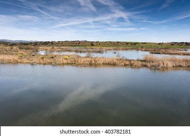 Wetlands associated with de River Guadiana, next to the Vicario Reservoir, in Ciudad Real Province, Spain