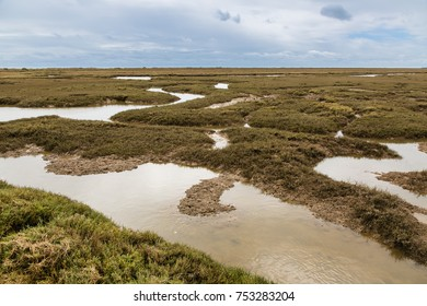 Wetlands near the town of Tavira. The southern Portuguese coast of the Atlantic.