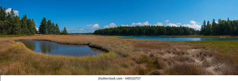 Wetlands panorama at Acadia National Park, Maine.
