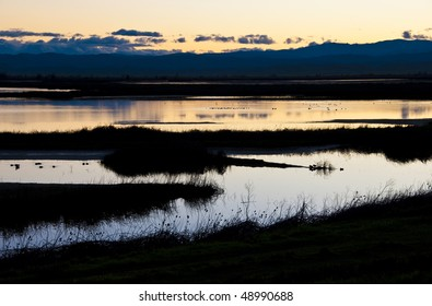 Wetlands and ponds at sunset at the Sacramento National Wildlife Refuge in the California Central Valley