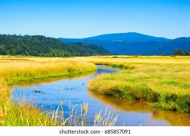 Wetlands of Steigerwald Lake National Wildlife Refuge in Clark County, Washington.