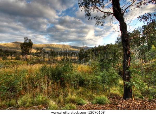 Wetlands at Tidbinbilla Nature Reserve