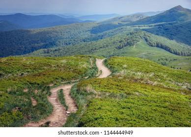 Wetlina hiking trail in Bieszczady National Park in Poland