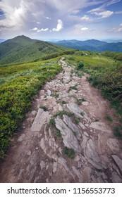 Wetlina hiking trail and Smerek mountain in Bieszczady National Park, Subcarpathian Voivodeship of Poland
