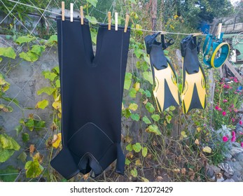 wetsuit, mask, fins dry on rope after swimming in the garden