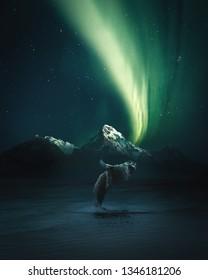 baleine sautant hors de l'eau en islande aux aurores boréales