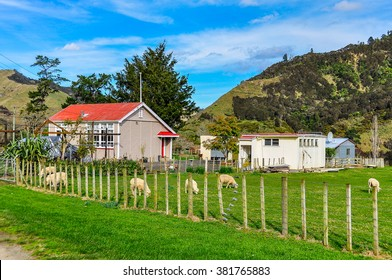 WHANGANUI, NEW ZEALAND - JULY 29, 2012: Typical farm in the Whanganui National Park, North Island of New Zealand